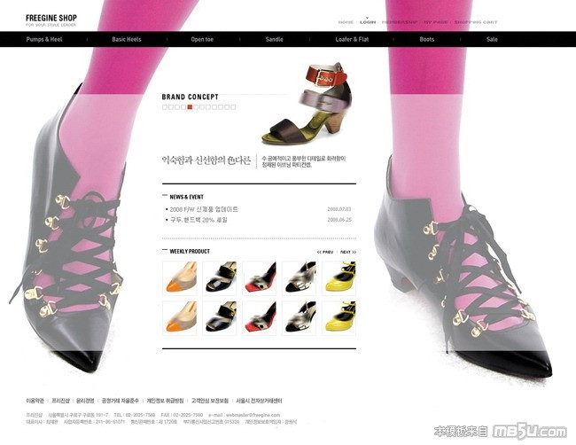 网页模板RED061预览图