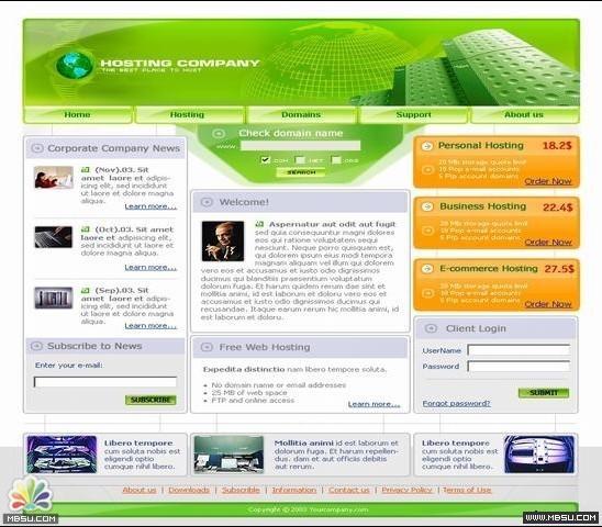 TemplateMonster 服务器模板 图片模板下载