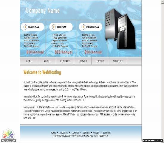 DesignEmpire 主机模板 图片模板下载